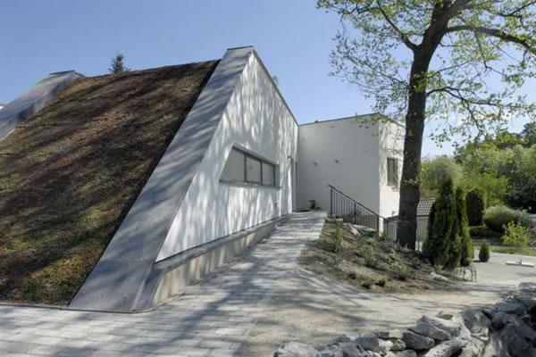 Eco Friendly Villa Harmoniously Embraces The Landscape