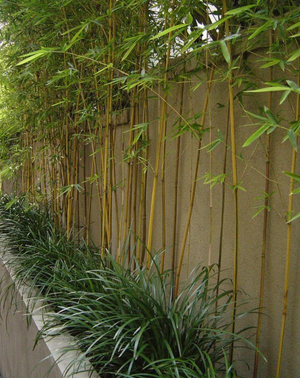 How To Decorate With Bamboo And Rattan