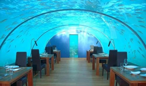 under-sea-crazy-restaurant