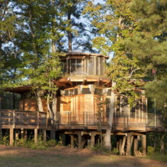 Camp Twin Lakes Treehouse By Lord, Aeck U0026 Sargent