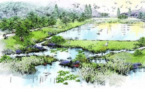 The-Ecorium-Project-2