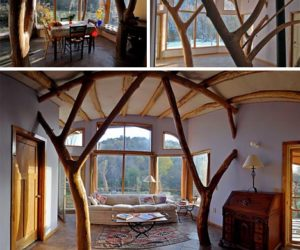 Tree eco aesthetic style home