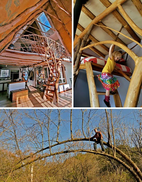 organic-whole-tree-home-construction