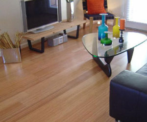 Bamboo Flooring Pleases the Environmentalists