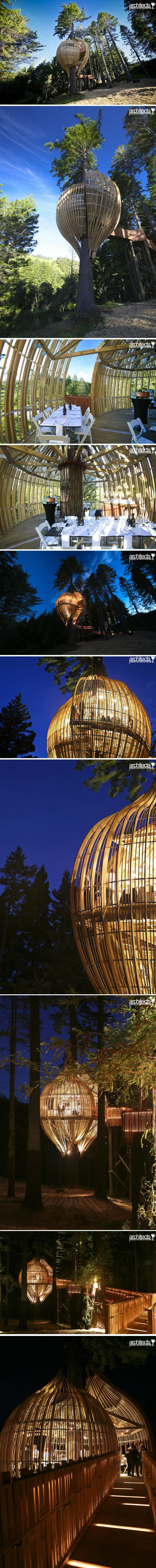 a brief description of the restaurant the yellow treehouse 15 most incredible tree houses in the world:yellow treehouse restaurant auckland, new zealand if fine cuisine and treehouses are your passions in life, then you.