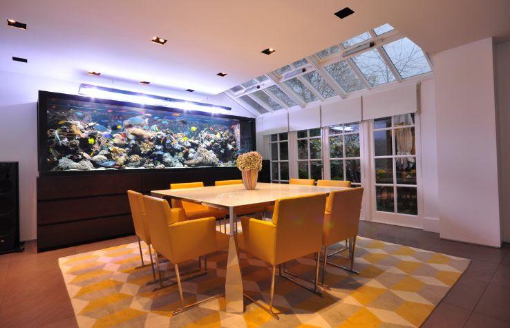 Large aquarium for dining room