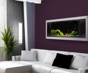 Wall-Mounted Aquariums – A Different Type Of Focal Point