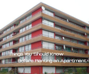Things You Should Know Before Renting an Apartment