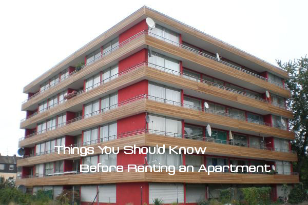 Lovely Things You Should Know Before Renting An Apartment