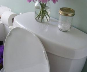 Natural Ways To Clean Your Bathroom And Go Green