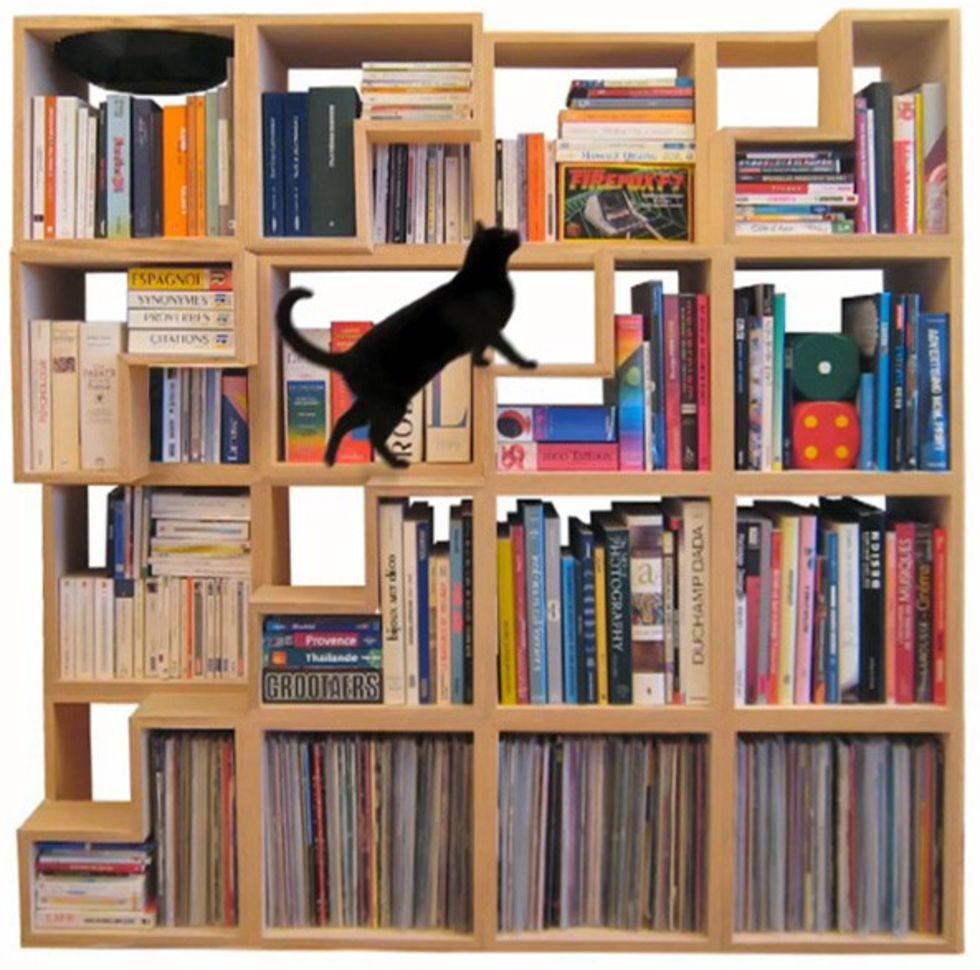 Кошачья библиотека идеи для ремонта.