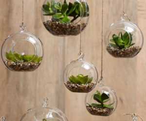 Superior 7 Stylish Ways To Use Indoor Plants In Your Homeu0027s Décor
