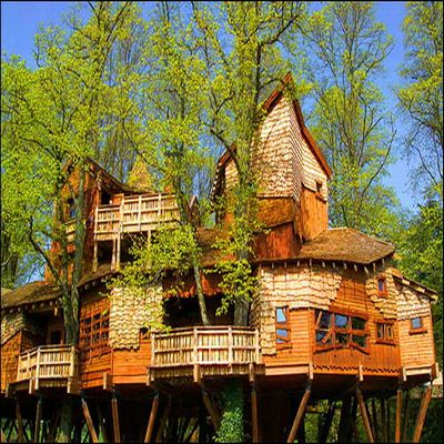 Tree Houses Or In Trees