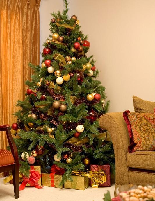Where to place the Christmas tree at home?