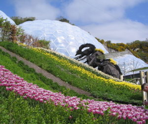 Eden Project in Cornwall, UK