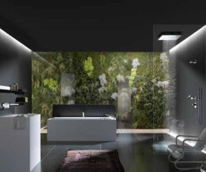 Relaxing Nature Bathroom Design in Black and White