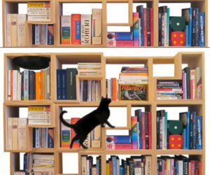 Feline-Friendly Modular Bookcase