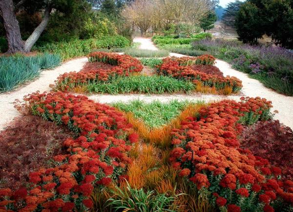 Drought Tolerant Garden Design