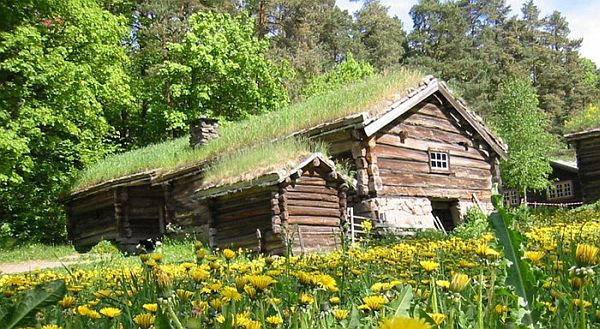 Norway Green Roofs (3)