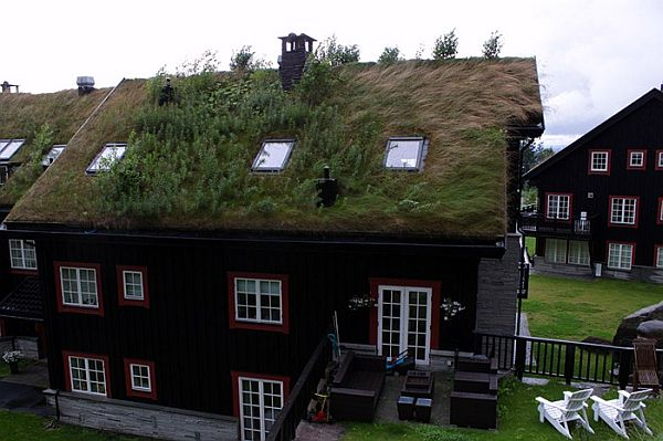 Norway Green Roofs (11)