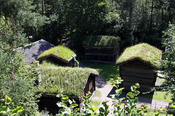 Norway Green Roofs (8)