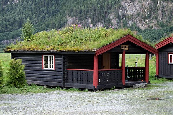 Norway Green Roofs (4)