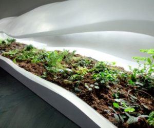 Elegant Indoor Planter by Paula Haynes