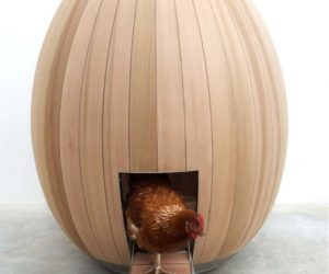Modern chicken coop