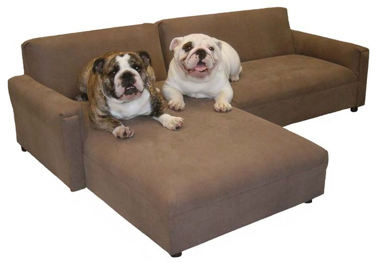 How To Choose Pet Friendly Fabrics?