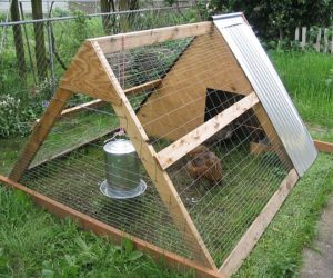 Do-It-Yourself Chicken Coop