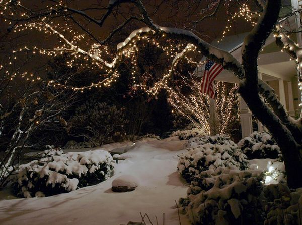 How You Can Use Outdoor Lighting To Highlight Your Landscape