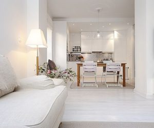 Amazing Apartment With Total White Look