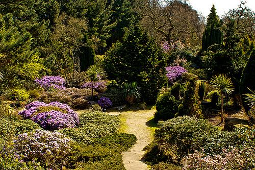 Exbury Gardens In UK
