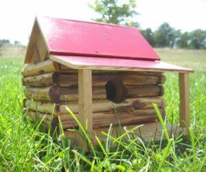 15 Cute DIY Birdhouse Design Ideas