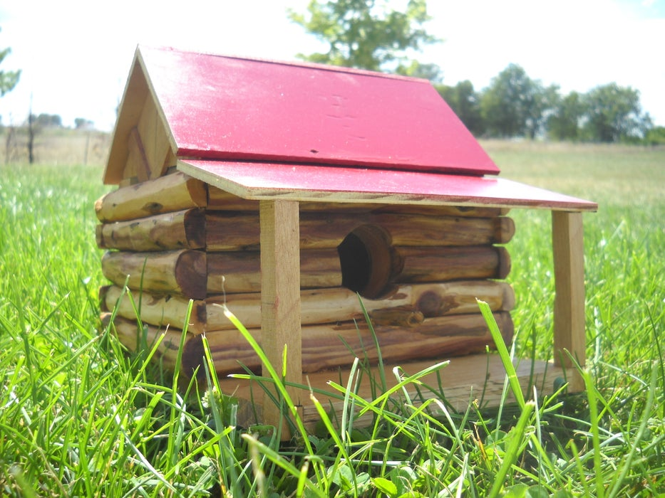 A bird cabin with a covered deck