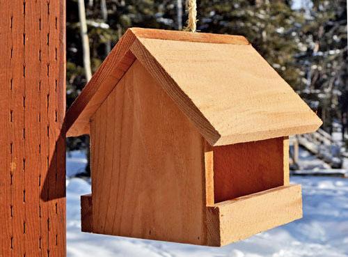 House-shaped bird feeder