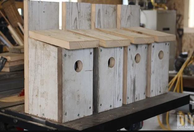 Bluebird bird houses