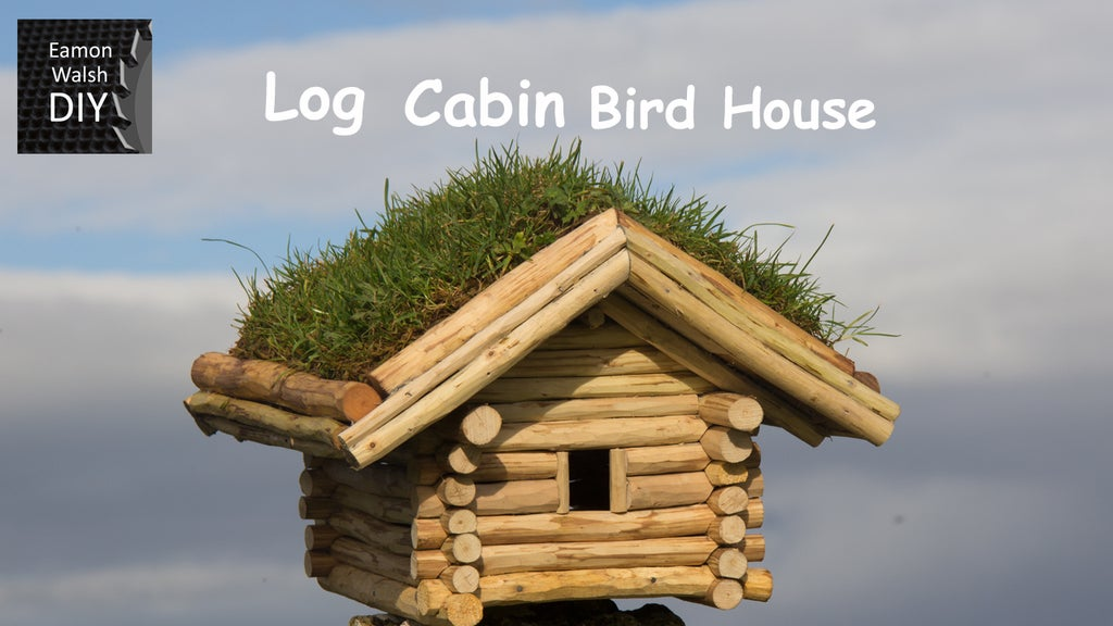 Tiny log cabin with a green roof