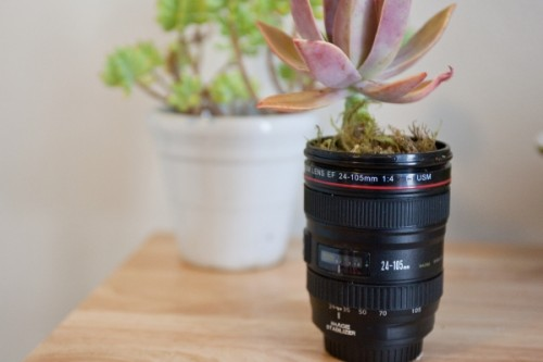 View In Gallery. These Camera Lenses ...