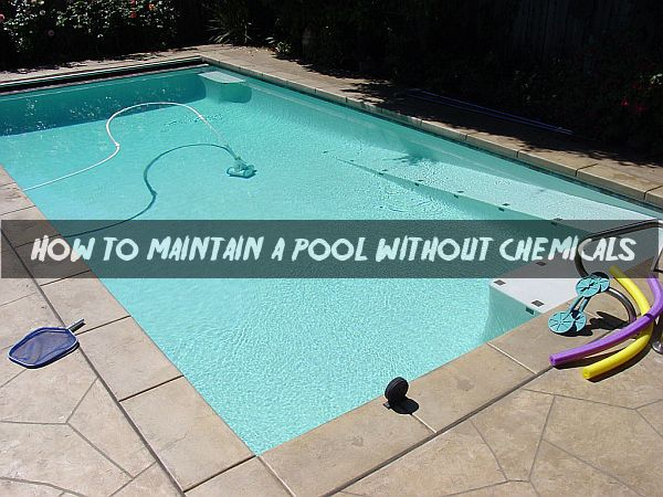 Maintaining A Pool Home Design
