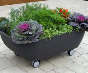 Mobile bathtub-like planter