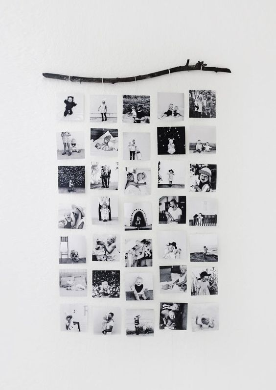 Branch hanging display pictures