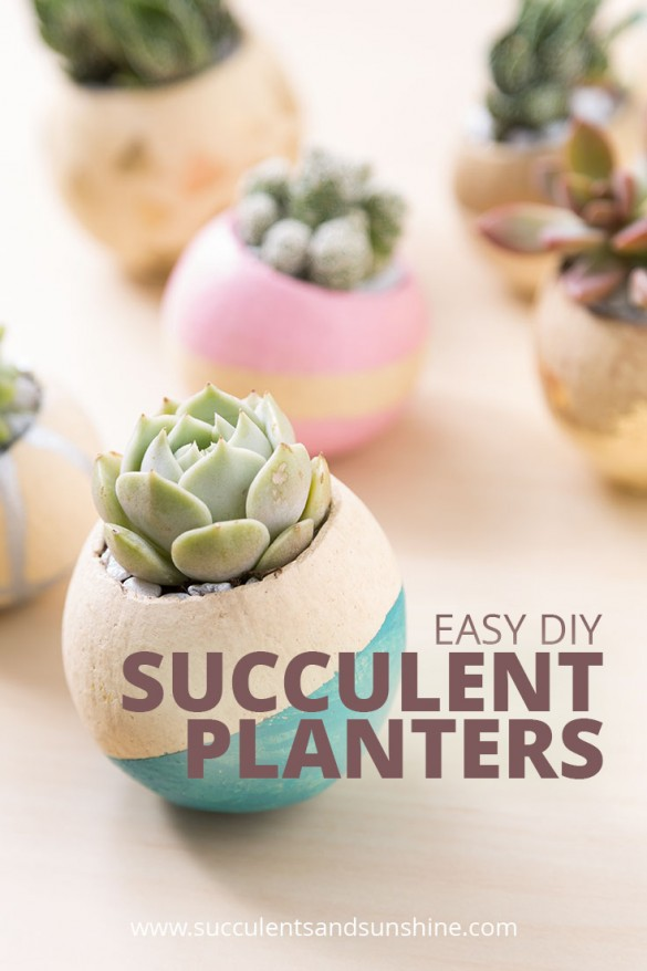 Easy succulent planter