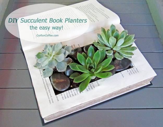 Succulent planter form an old book