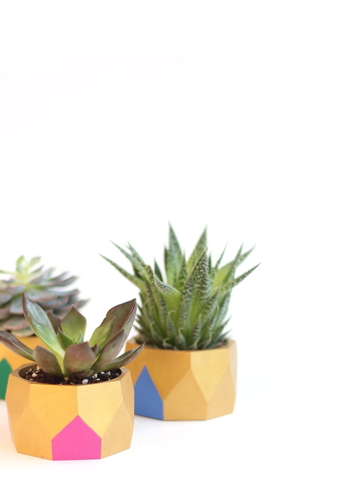Wooden bracelet planter