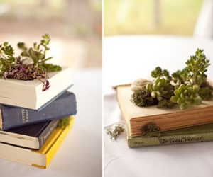 How To Turn An Old Book Into A Planter For Your Succulents