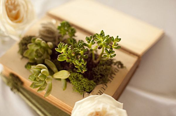 diy-book-planter-06