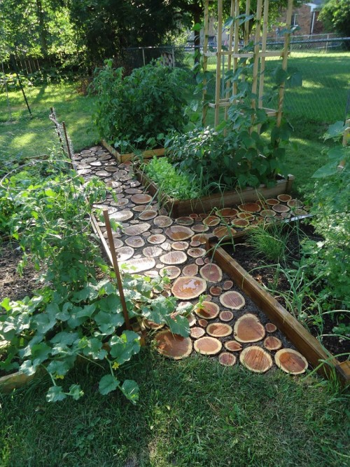 Lovely DIY Garden Paths Of Wood Slabs
