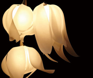 Delicate Blossom Pendant Lamps by 3Form