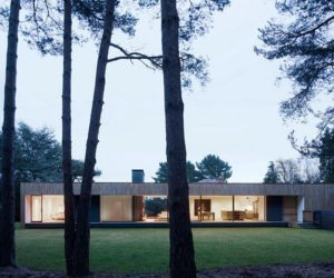 The New Forest National Park House by John Pardey Architects